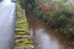 Leat View 6