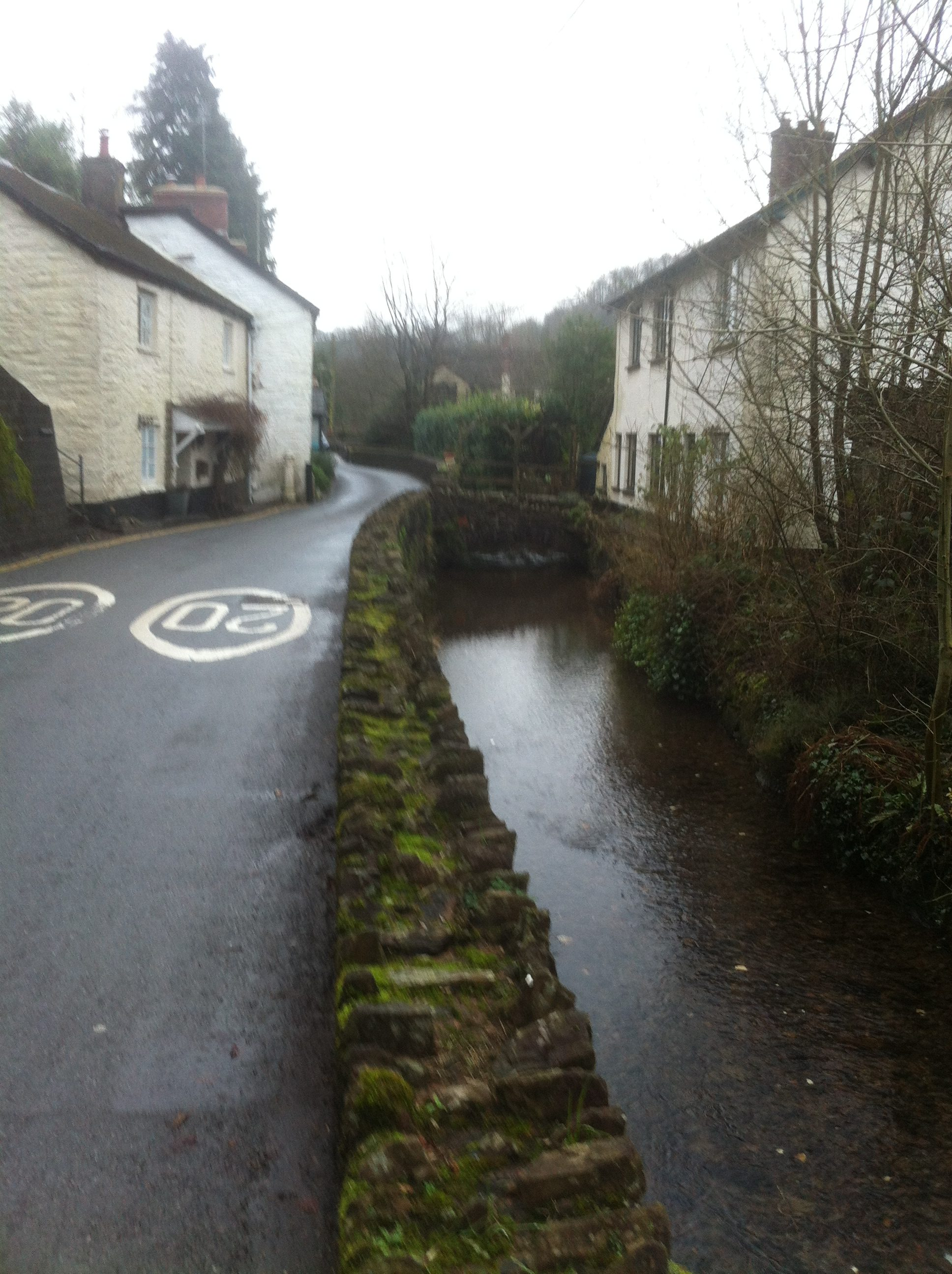 View of leat adjacent to Northmoor Road (1)
