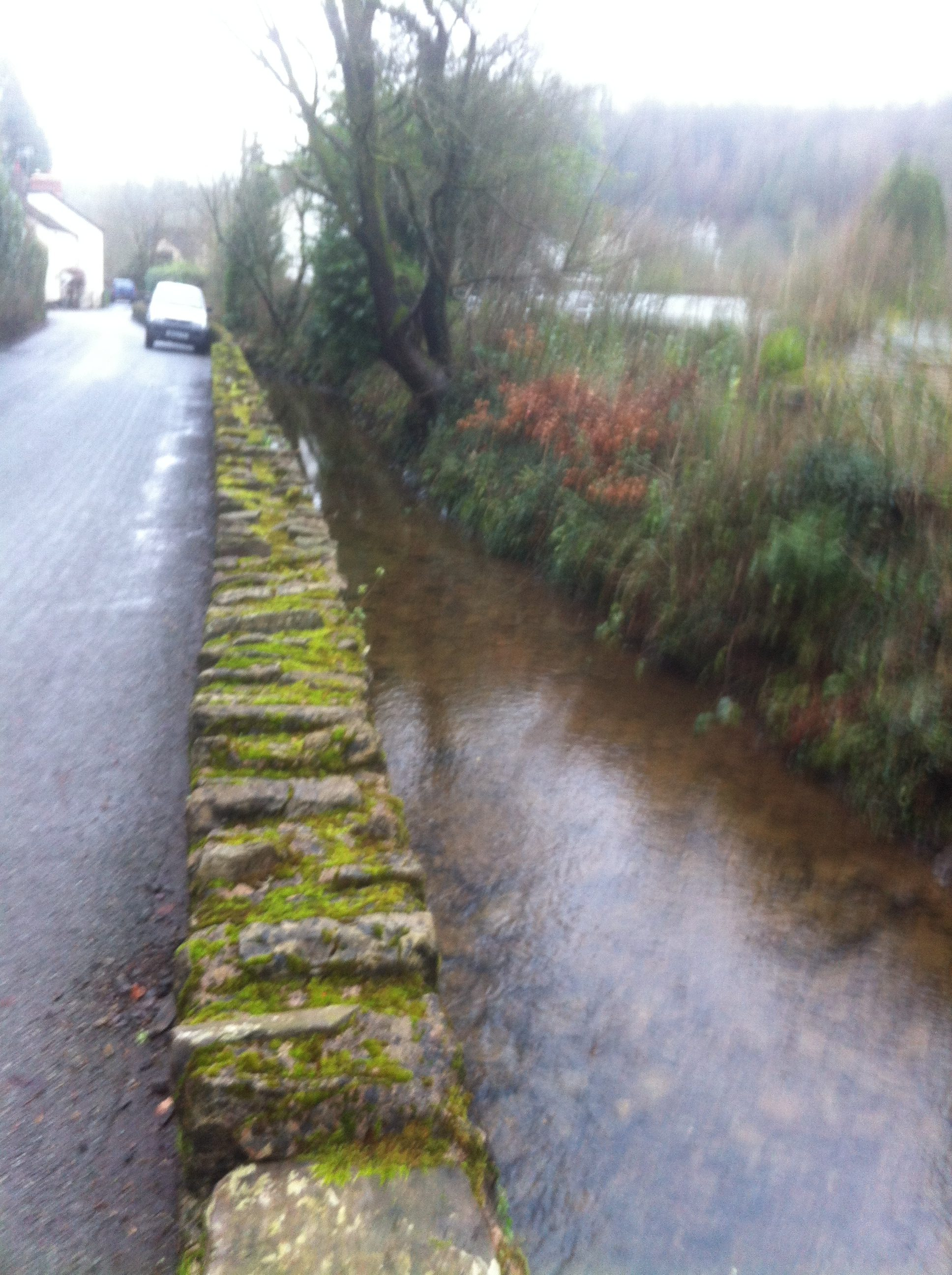 View of leat in Northmoor Road (2)