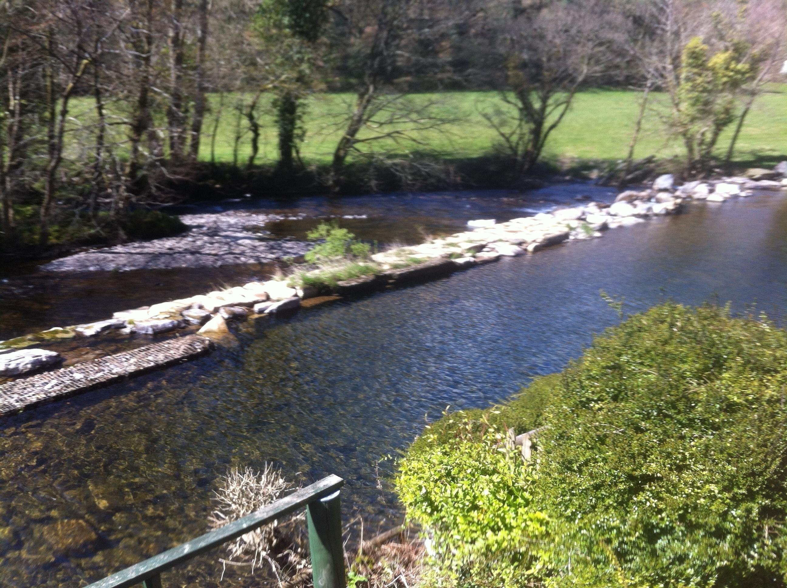 Dulverton Weir summer 2016 (1)
