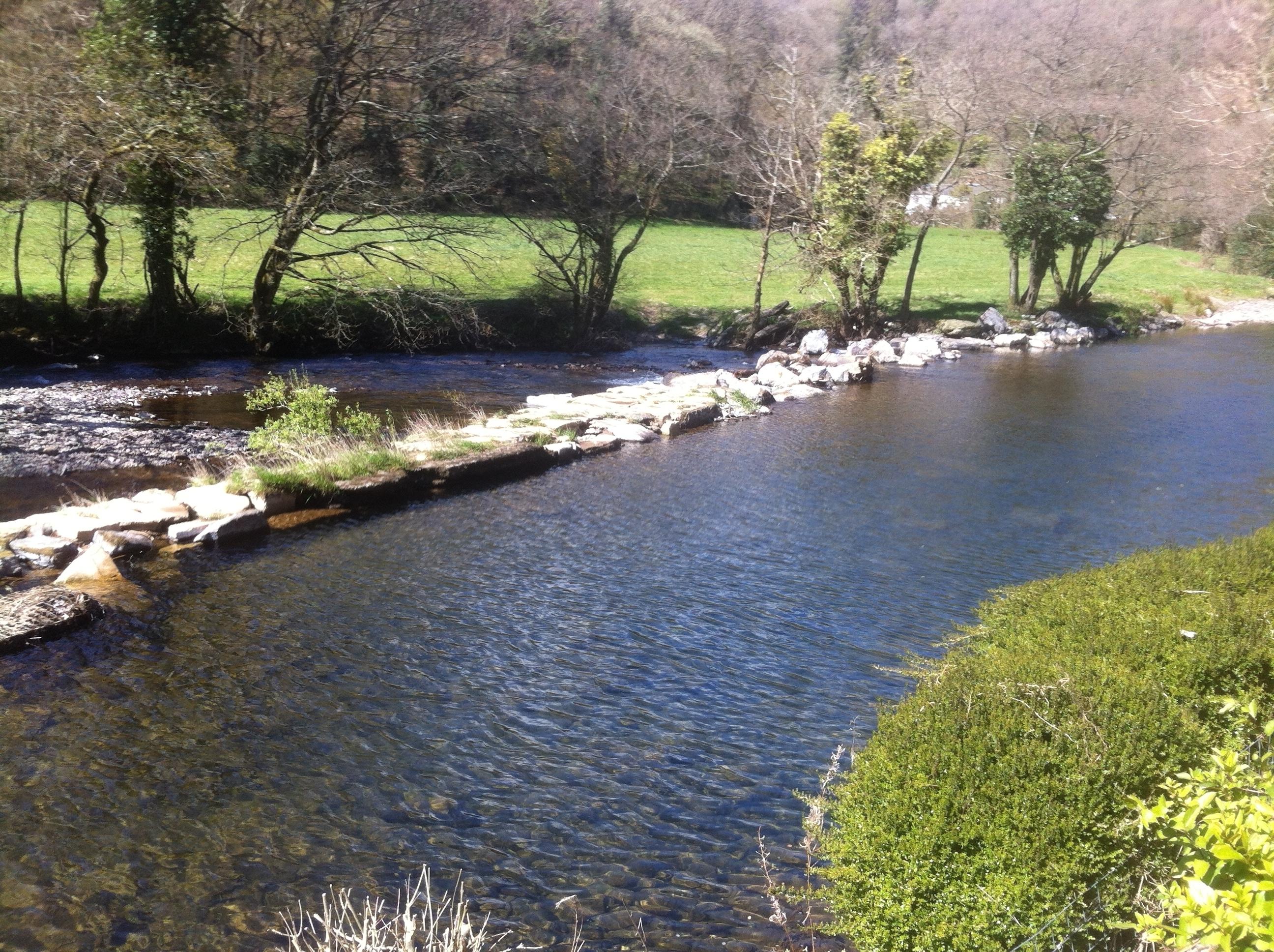 Dulverton Weir summer 2016 (2)