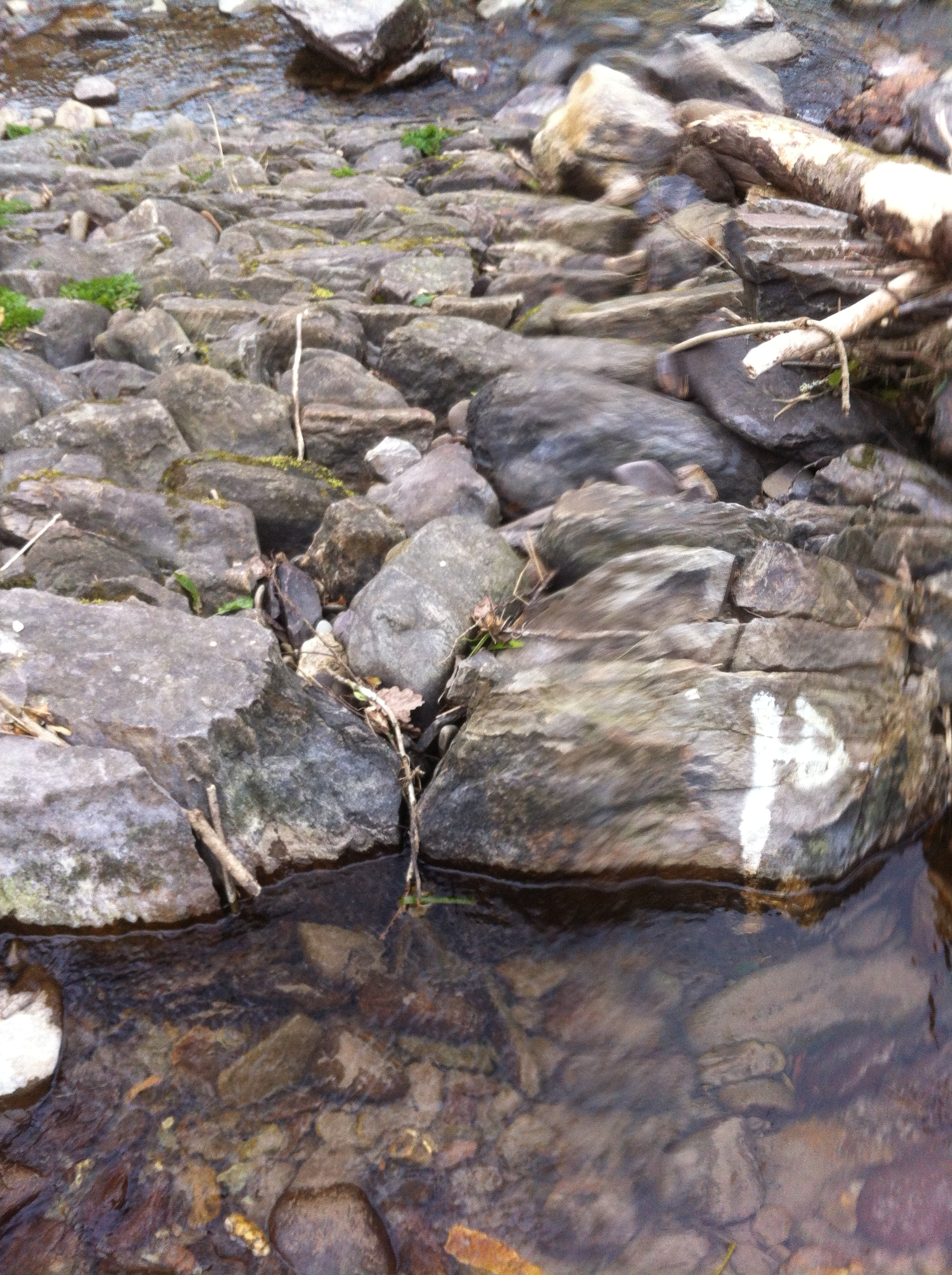 Original weir stones still visible in the structure (2)