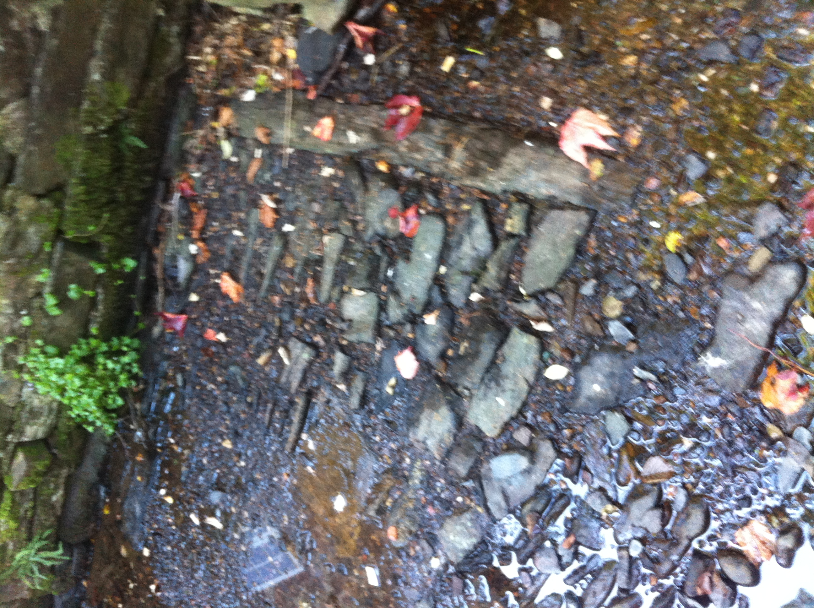 Original bed of the leat discovered behind Town Mills 2016 (4)