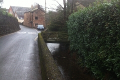 View of leat adjacent to Paper Mill House