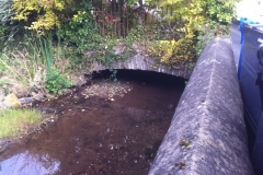 The leat as it exits the rear of Holland House (1)
