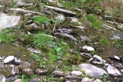 Original weir stones still in place