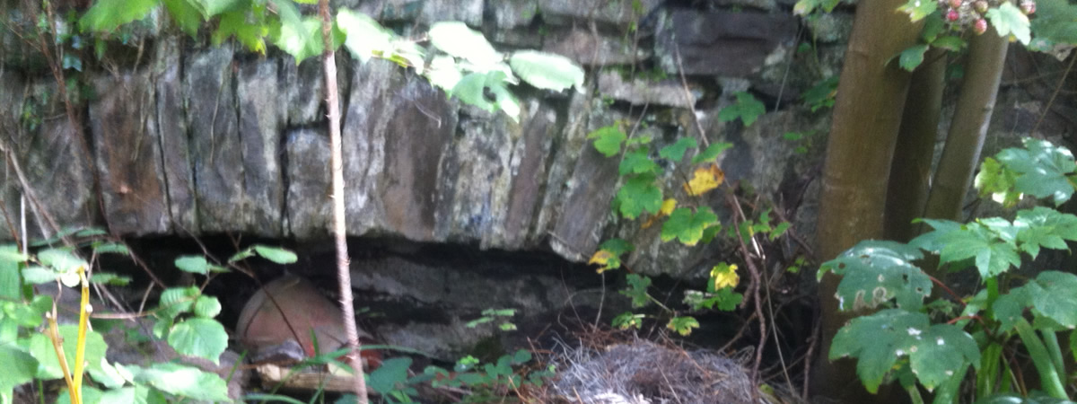 Disused water culvert under Dulverton Laundry